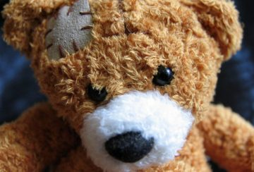 plush-teddy-bear-1082525_1920
